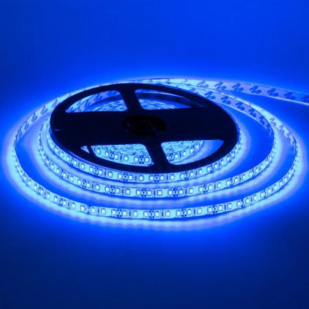 Светодиодная лента синяя 12V smd2835 120LED/м IP65