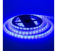 Світлодіодна стрічка синя 12V smd5050 60LED/м IP65