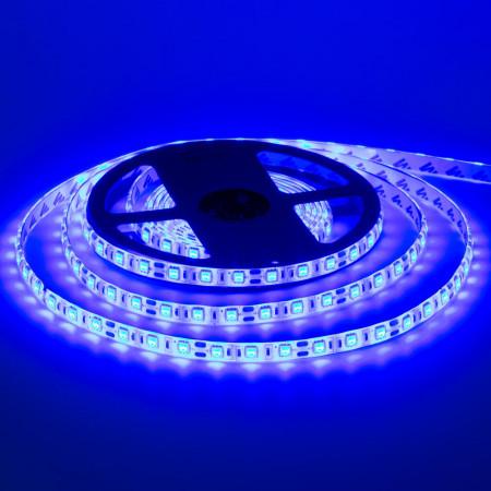 Светодиодная лента синяя 12V smd5050 60LED/м IP65