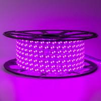 Светодиодная лента розовая 220V smd2835 120LED/м 12Вт/м IP65